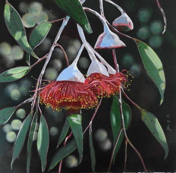 Julie Hollis Gumnut Blossoms Artlovers Australia