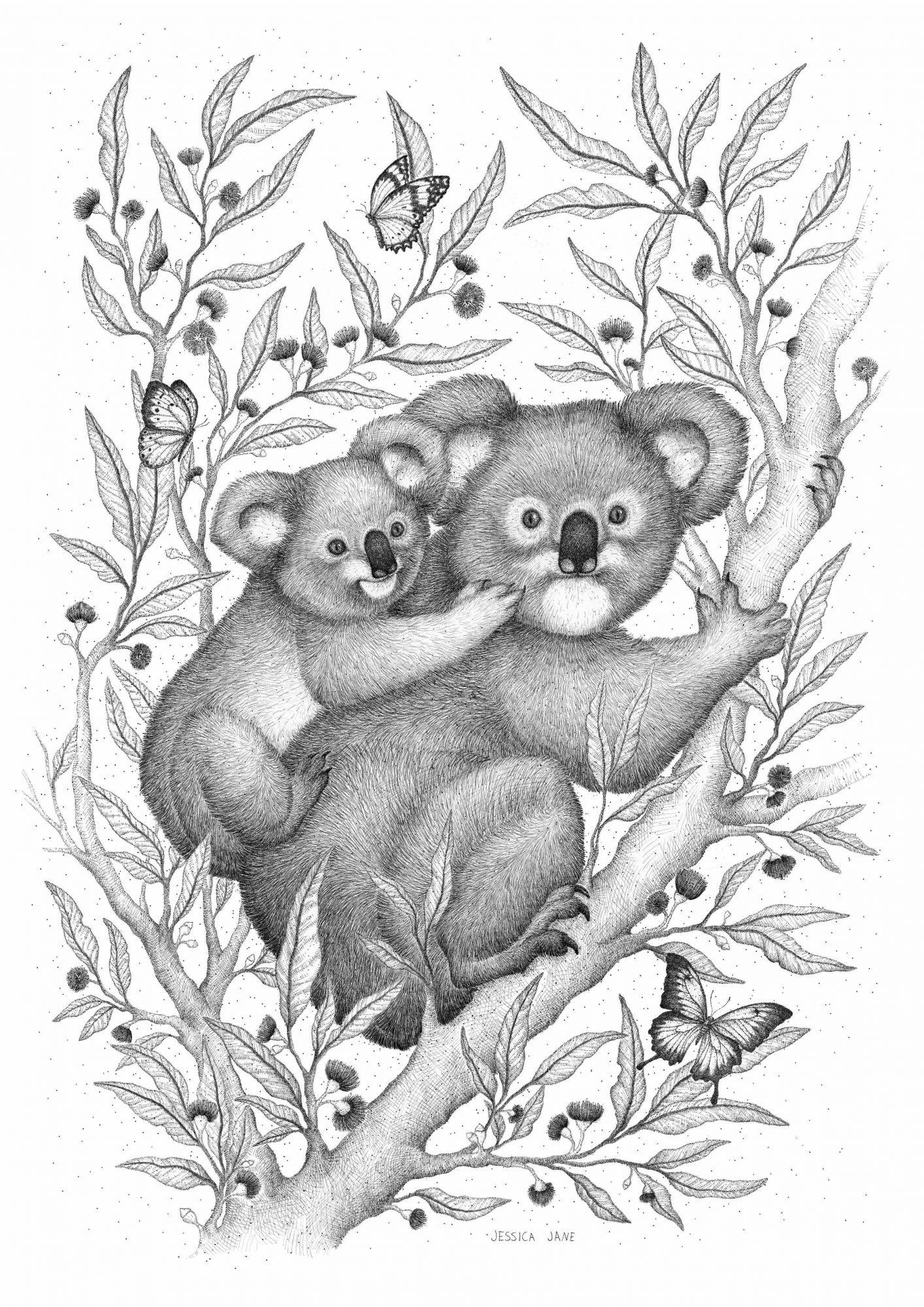 Koala A1
