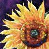 Sunburst Detail 1