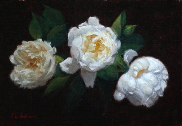 White Roses Vicki Sullivan Art Lovers Australia Oil On Linen H 19cm X W 27cm 2019