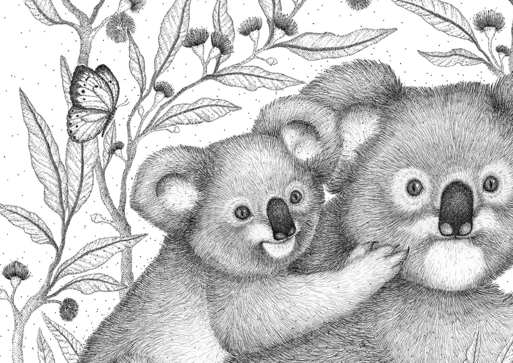 Koala2web