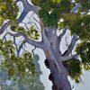 New Gumtree