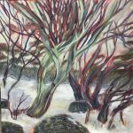 Wild Branches, snow gums Perisher