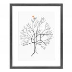 Australis Tree