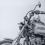 Ride This Hog | Special Ltd. Edition Canvas Print