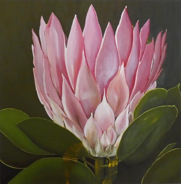 Kim Rees Pink Protea