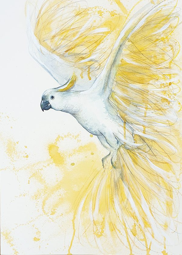 Artist Leni Kae Flight Of The Sulphur Crested Cockatoo 59x42cm Yellow White Sm 2