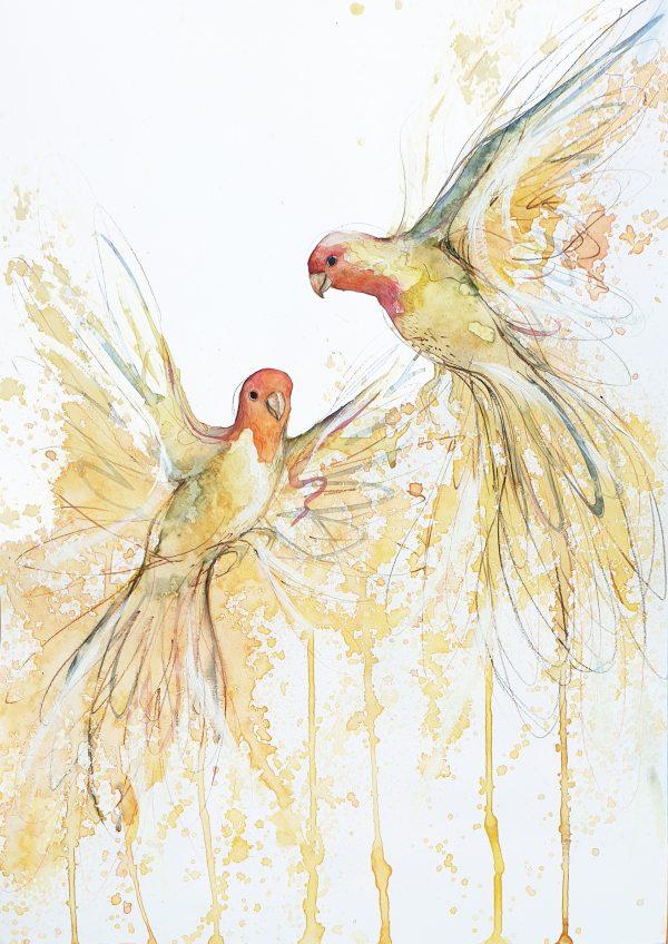 Artist Leni Kae Joy In Flight (sun Conures Flying) 2