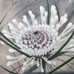 Drumstick Flower