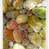 Finding The Perfect Pebble Iii.5