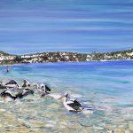 Wooli River Pelicans