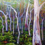 Gum Trees – Norton Summit