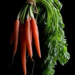 Carrots ~ Still Life Photography