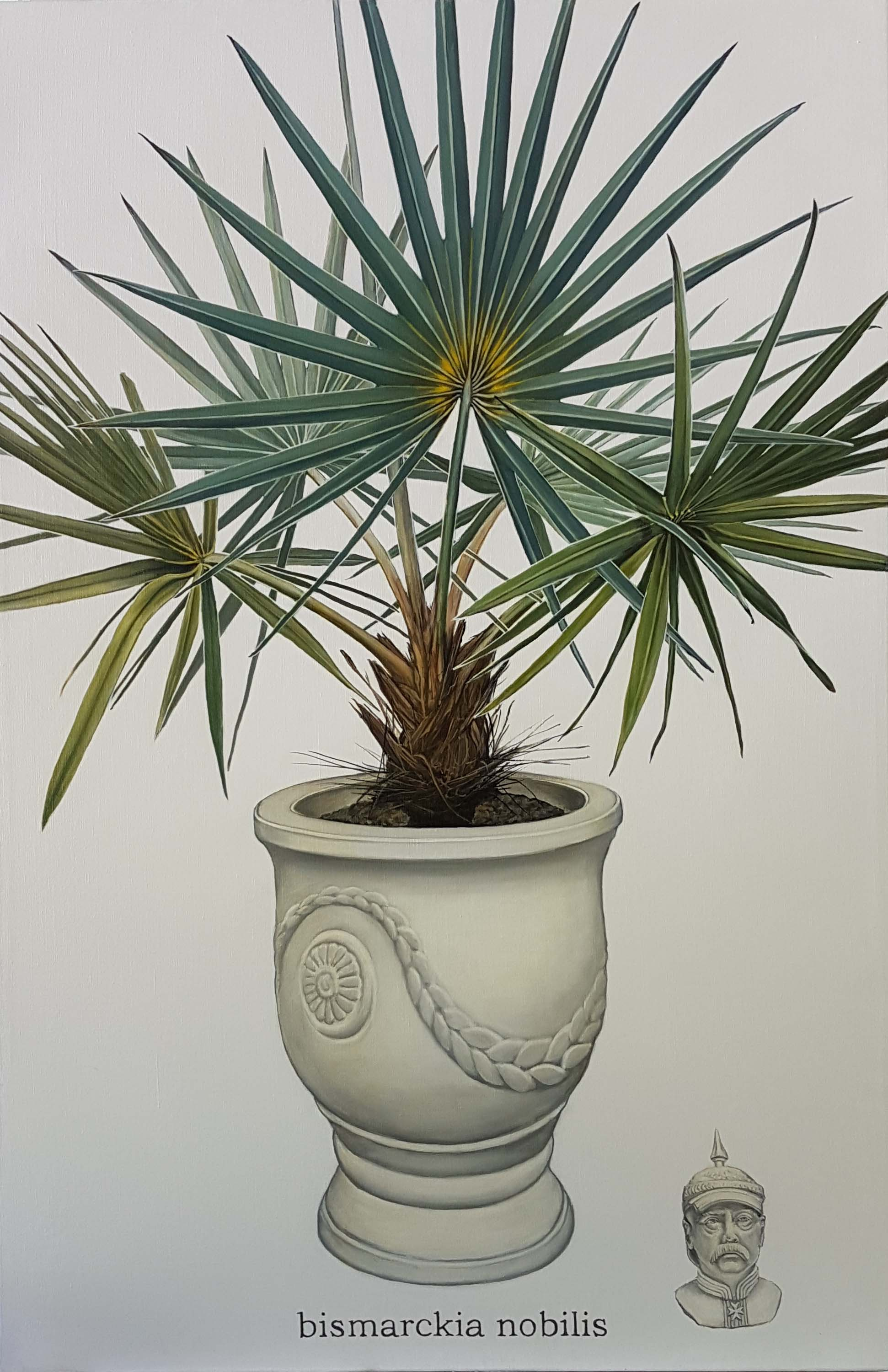 9 Potted Palm