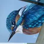 Kingfisher – Mini Bird Series 3/100