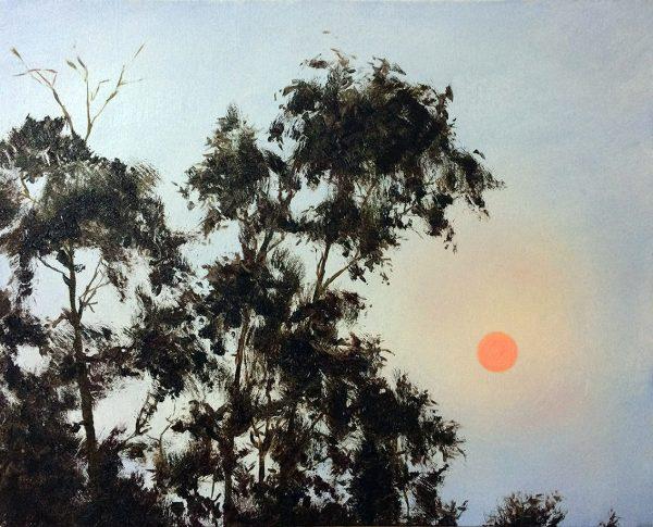 Orange Sun And Trees