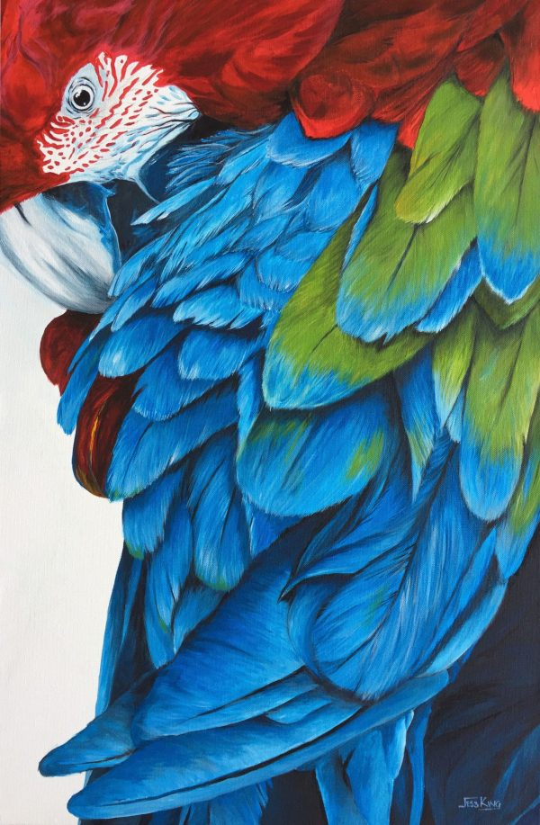 Feather Love Jess King Art Lovers Australia