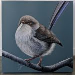 Fairy Wren – Mini Bird Series 1/100