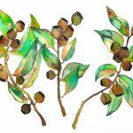 Eucalyptus Trio