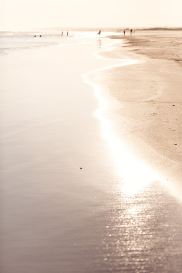 Afternoon Light On The Shore