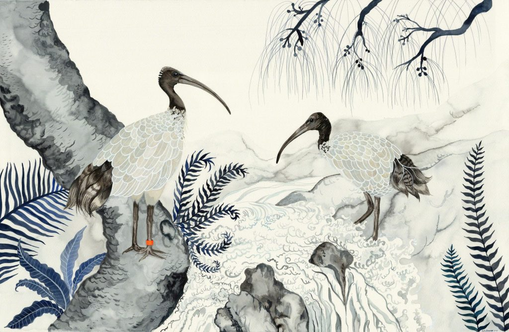 Sallybrowne Artist Ibis Prints Original Art For Sale