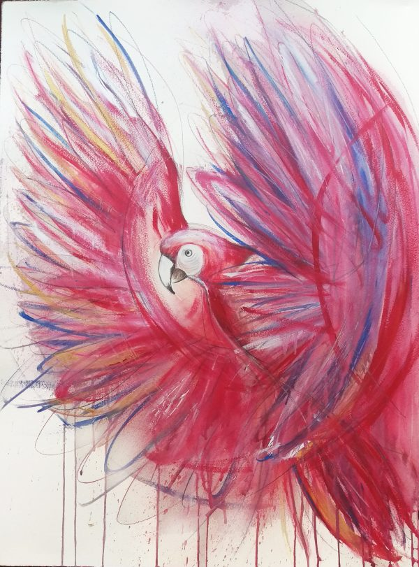 Updated2a Red Macaw Painting Sydney Artist Leni Kae Copyright