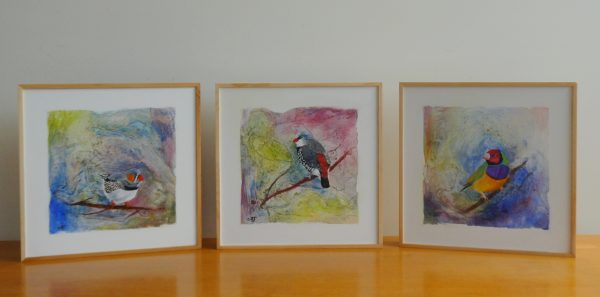 Australian Finch Triptych, $495 Clare Riddington Jones