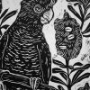 Black Cockatoo With Banksias Detail 2