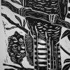 Black Cockatoo With Banksias Detail 3