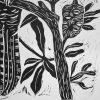 Black Cockatoo With Banksias Detail1