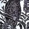 Black Cockatoo With Banksias Detail