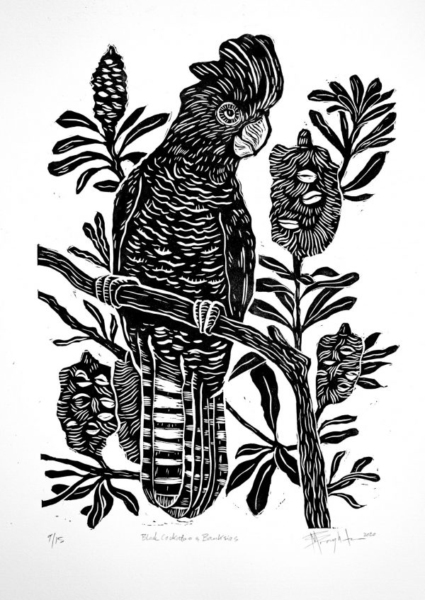 Black Cockatoo With Banksias Linocut