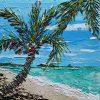Palm Cove Crop