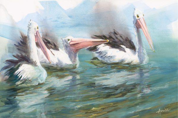 Always Optimistic Pelicans
