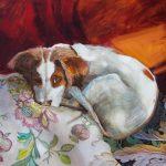 A patch of light, Brittany spaniel dog