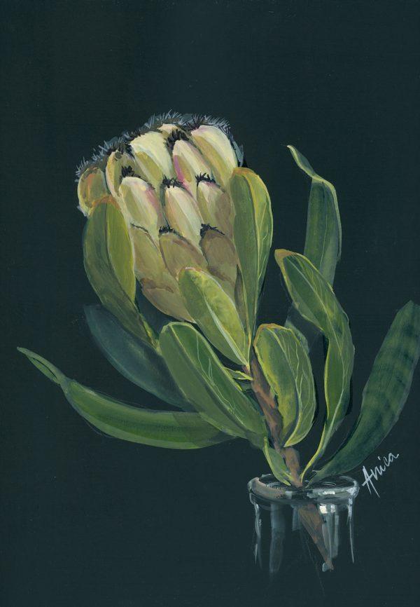 Fresh Mink Protea Al