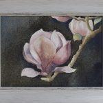 Magnolia l