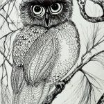 Owl in Pen