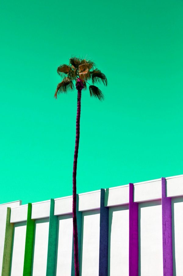 Palm Springs Palms Stripes 600x904