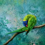 Personal Time – Rainbow Lorikeet