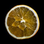 Orange Slice ~ Fruit Still Life