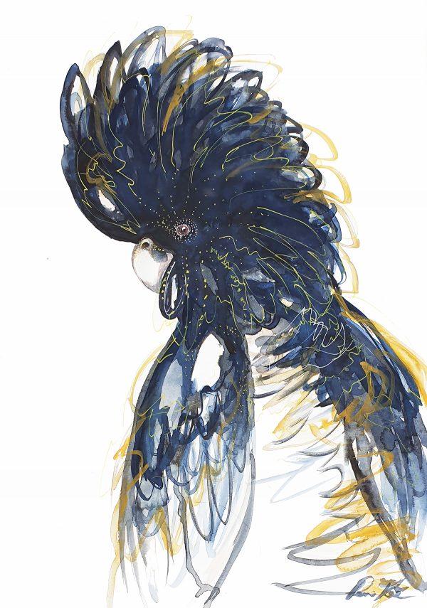 Alfie Australian Black Cockatoo Portrait Leni Kae Artist Sm