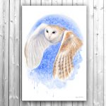 Barn Owl Silent Flight – Ltd Ed Canvas Print