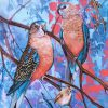 Burkes And White Winged Wrens Detail 1