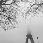 French Mono – Brouillard