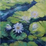 Waterlilies One Pale Pink Blossom