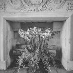 French Mono – Les Fleurs du Chateau