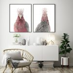 Sid the Fledgling Galah, Back/Front View, Set of two Ltd Ed prints