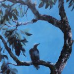 Summertime – Magpie song