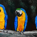 The Three Amigos – Beautiful Macaws